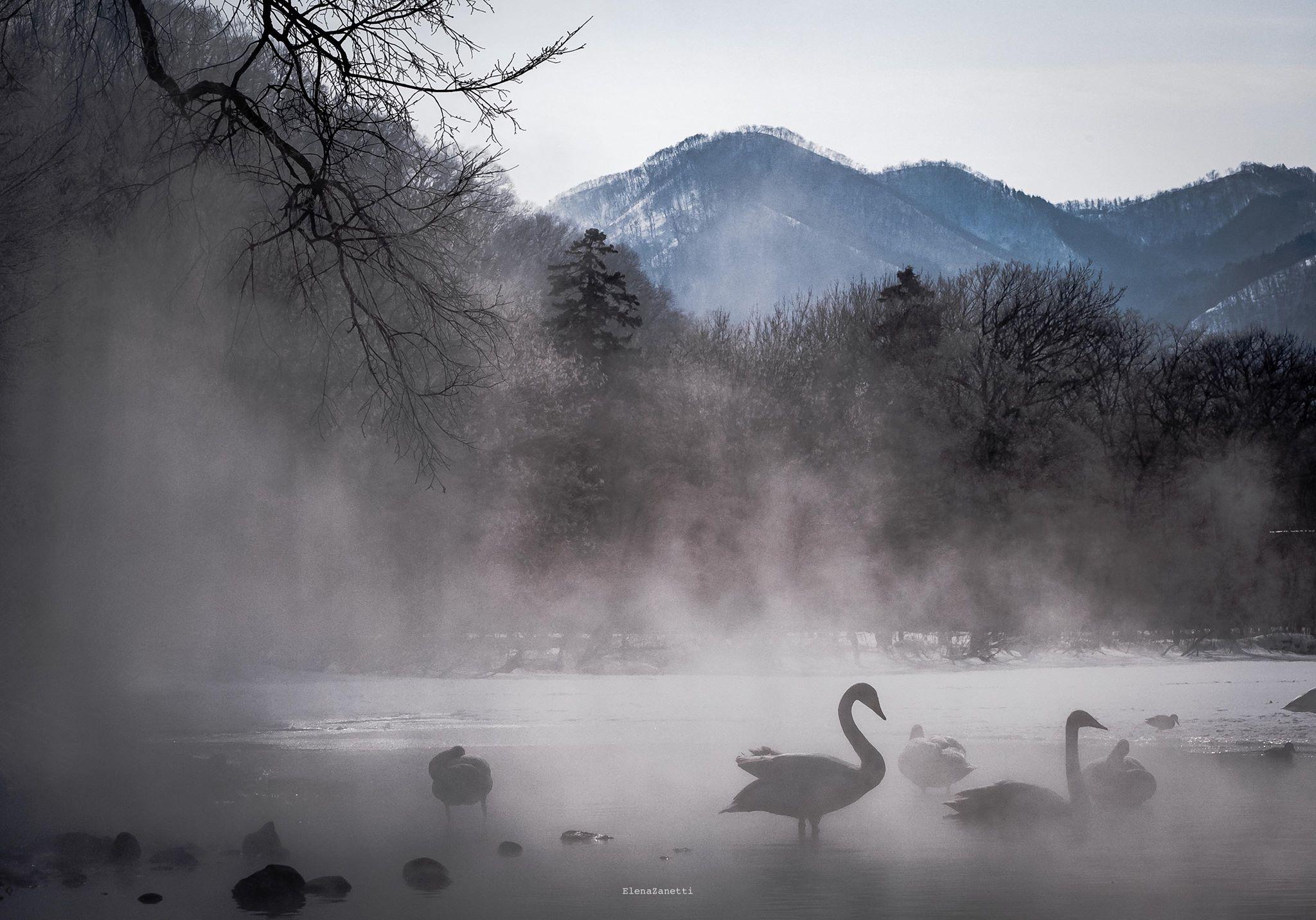 Hokkaido Elena Zanetti